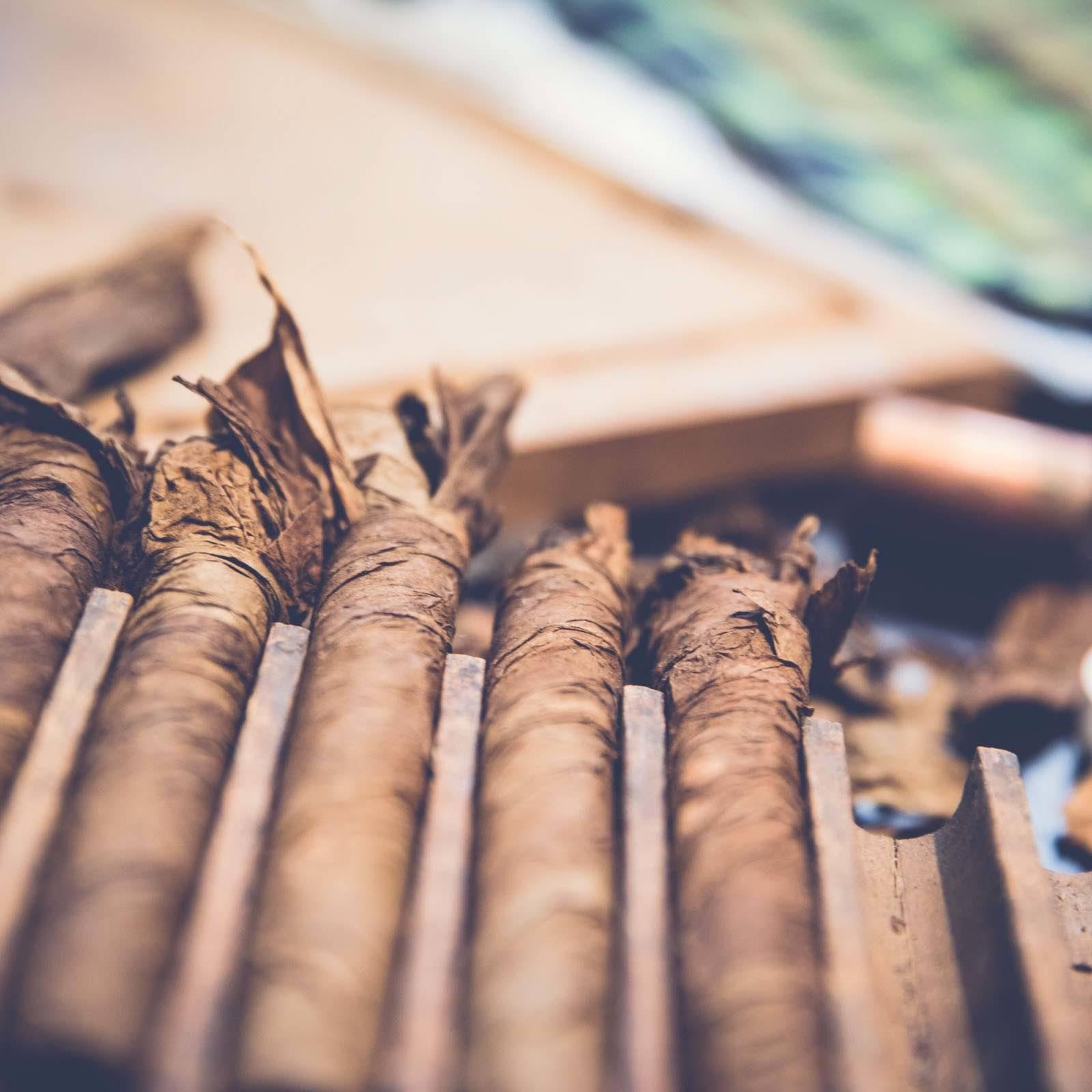 Zigarrendreher | Hamburg | Zigarren | Drehen | Zigarrenroller | Zigarrenrollerin | Zigarrendreherin | Mieten | Anfragen | Trocadero | Handgemacht | Zigarren | Shop | Geschenk | kaufen | Robusto | Corona | Torpedo | Banderole | Tabak
