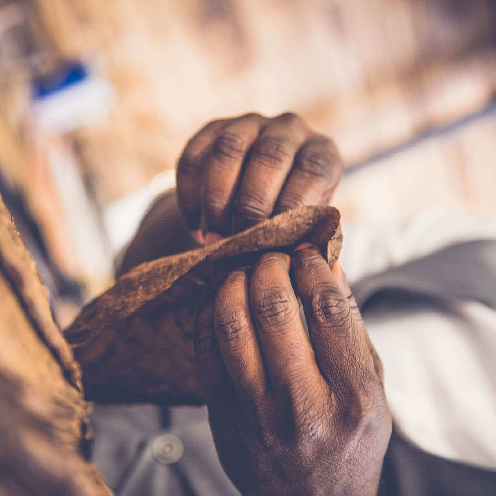 Zigarrendreher | Hamburg | Zigarrenroller | Zigarrenrollerin | Trocadero | Kaufen | Shop | Buchen | Mieten | Handgemacht | Zigarren | Churchill | Robusto | Corona | Robusto | Banderole | Bauchbinde | drehen | Tabak | Cuba | Brasilien