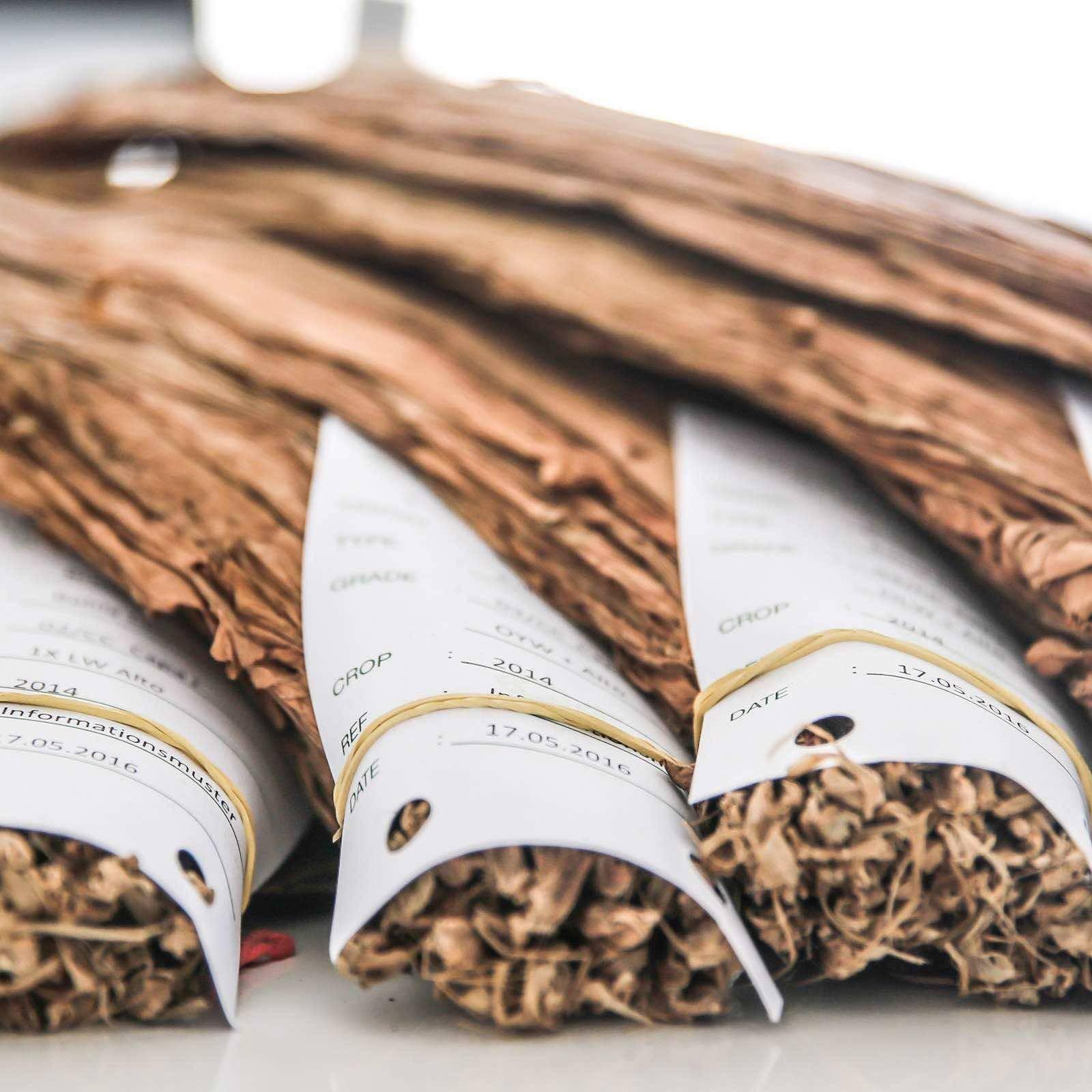Zigarrendreher | Hamburg | Zigarrenroller | Trocadero | Zigarren | Drehen | Tabak | Banderole | Bauchbinde | Tabak | Sumatra | Brasilien | Indonesion | Cuba | Torpedo | Robusto | Churchill | Corona