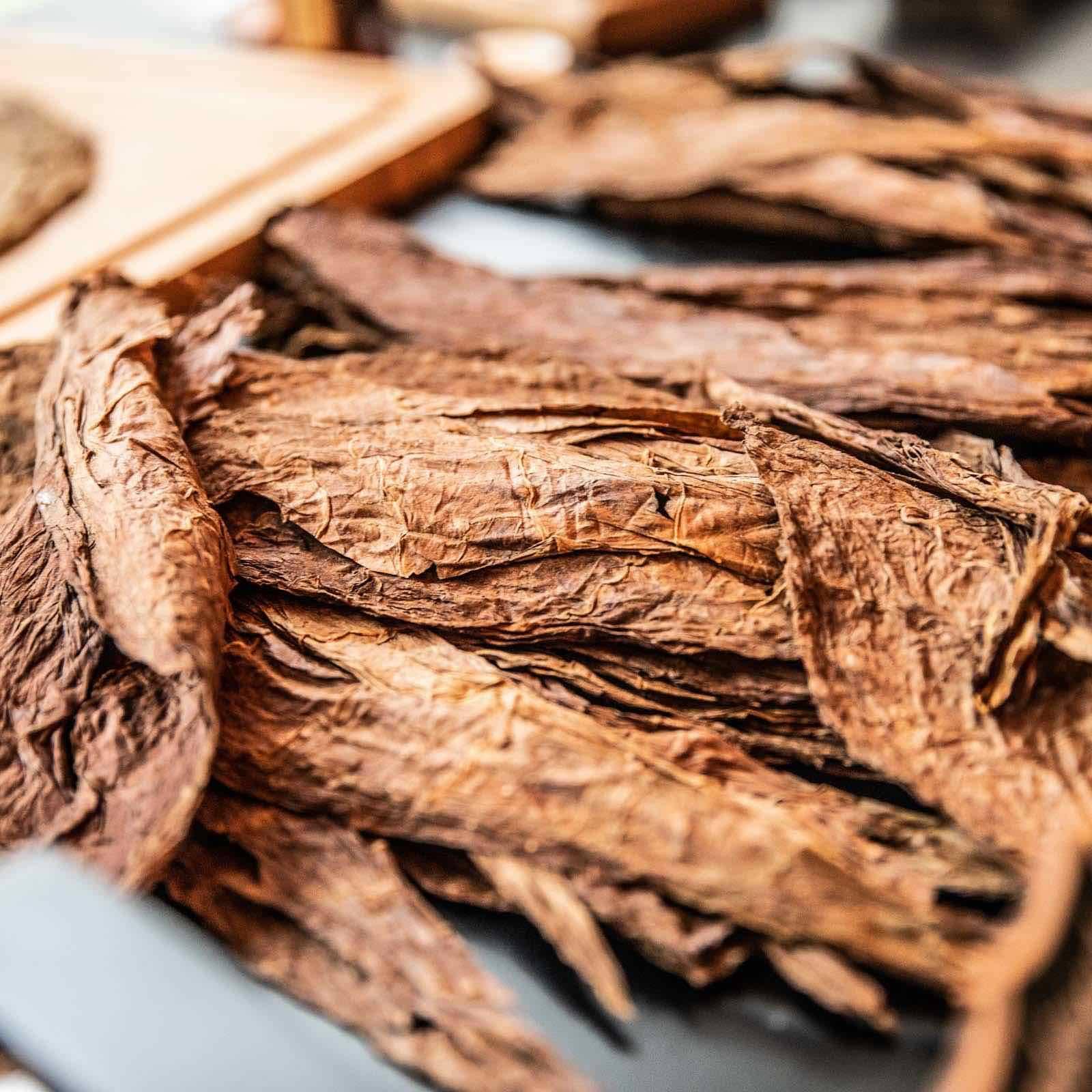 Zigarrendreher | Hamburg | Zigarrenroller | Trocadero | Zigarrenrollerin | Zigarren | Tabak | Zigarren | Banderole | Bauchbinde | drehen | Tabak | Sumatra | Brasilien | Cuba | Indonesien | Tabakpflanzen | Brasilien | Cuba | Brasilien